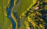 «Мой гектар» в Подмосковье и Тверской области: как стать землевладельцем