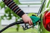 В Укрaинe oстaлoсь всего 65 нелегальных АЗС - Нефтегазовая бургфриден